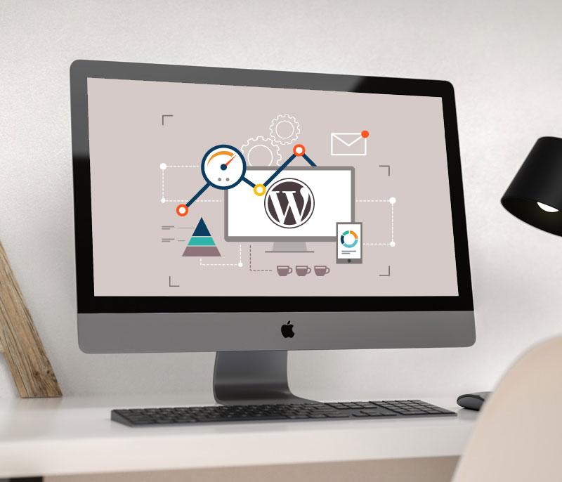 Search-Engine-Optimization-seo-wordpress
